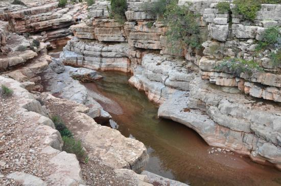 Le canyon rose entre Tamlalt et Tamgalt