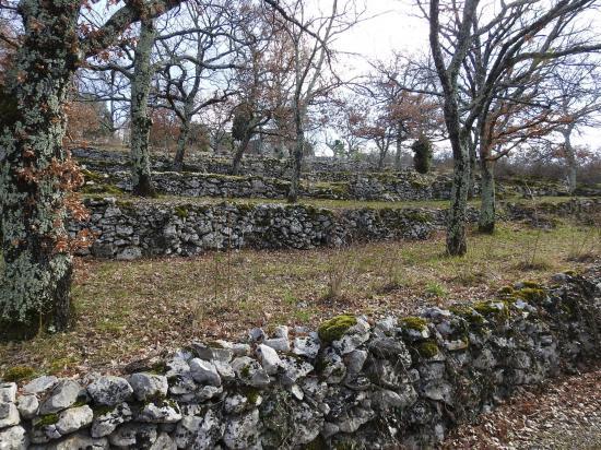 Les terrasses agricoles à Gouylon