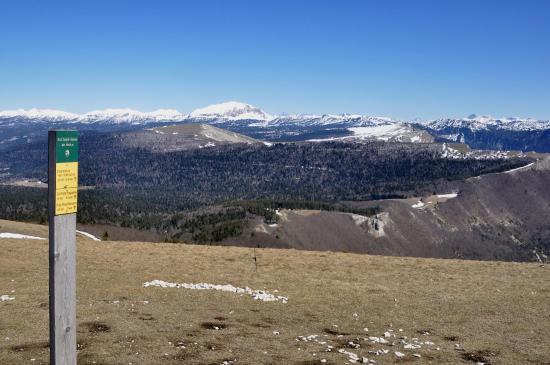 Au sommet du But Saint-Genix (1634m)