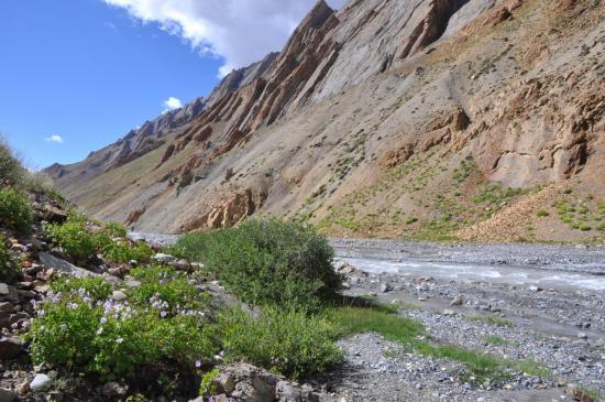 Vallée de la Niri Chu (Shade Pullu)