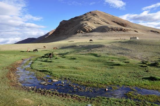 Le camp de Pongunagu