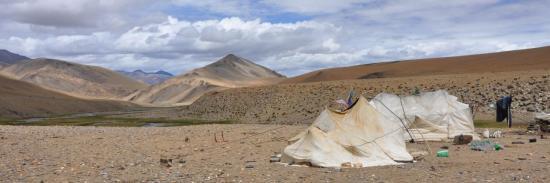 Campement de nomades à Rajun Karu