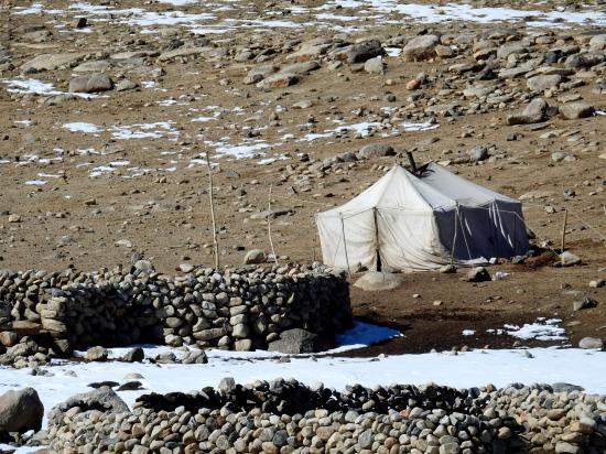 Une tente de nomades en bordure de la Bulchen Togpo