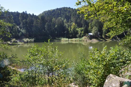 Le lac de Neuweiher