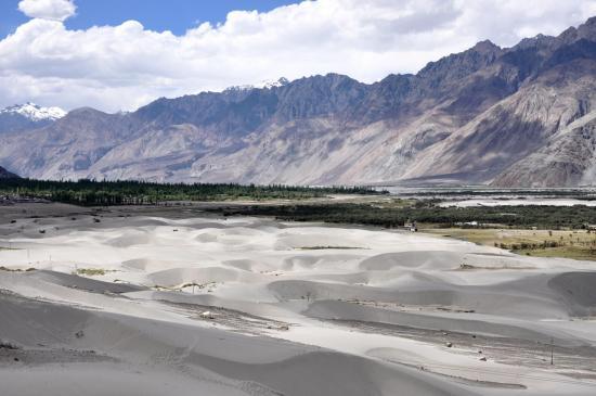 Le désert de sable (vallée de la Shyok)