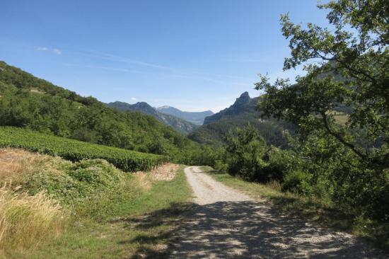 Descente au milieu des vignobles de Saint-Benoit-en-Diois