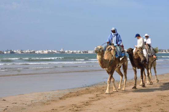 Arrivée par la plage à Essaouira