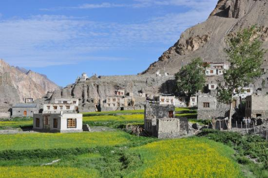 Le village de Markha