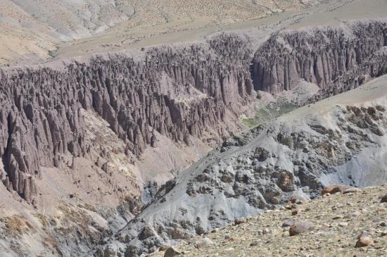 Montée sur le plateau du Nyimaling