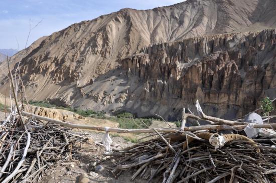 Le lhato de bois à l'entrée de la vallée qui conduit au Namste La