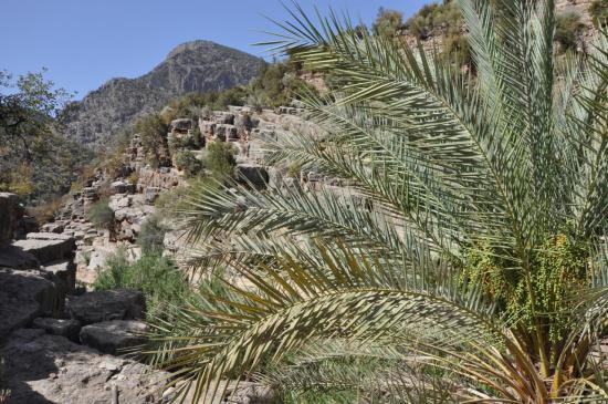 Dans les gorges du côté d'Aghori Oufella