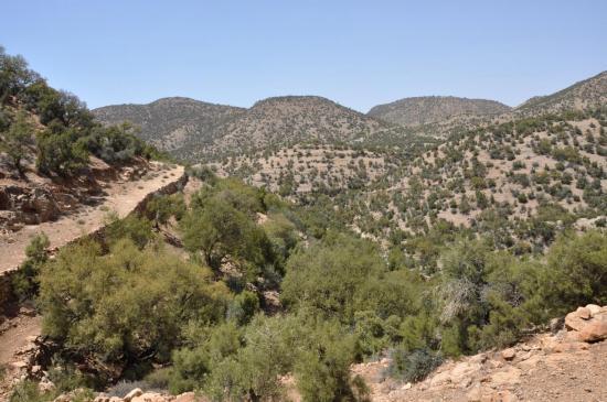 Sur la piste entre Aghori et Souk el Had