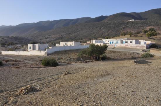 Un petit Rungis au milieu de nulle part : bienvenue à Souk el Had !