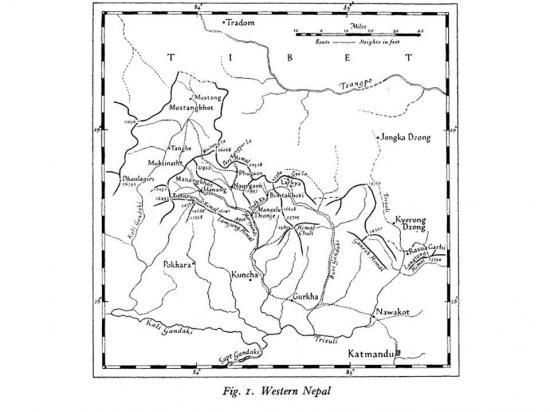 La carte de l'explorateur Tillman en 1950