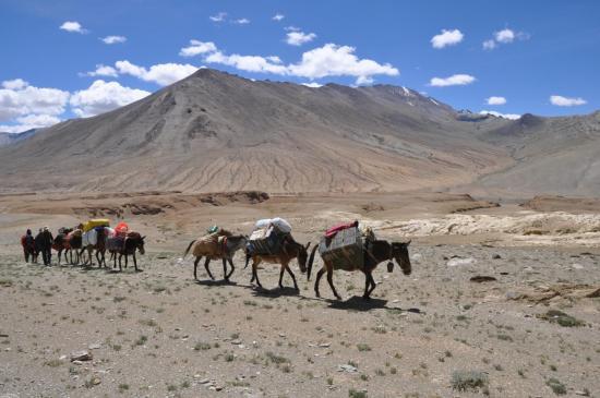 Notre caravane traverse le plateau de Kharnag