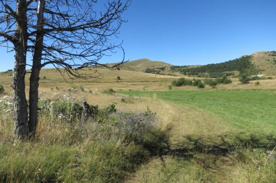 Le sommet de la Servelle vu depuis la bergerie du Serre de l'Eglise