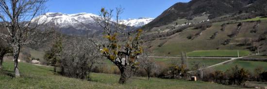La vallée de Quint (Saint-Andéol)