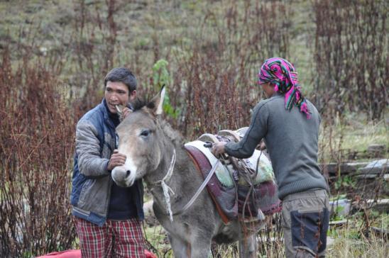 La mule est rebelle, visez un peu la méthode !