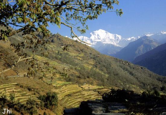 Le Dhaulagiri réapparaît à l'approche de Jhi