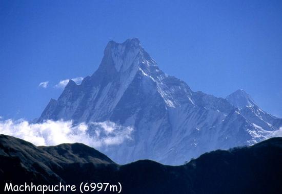 Le Machhapuchchhre vu de Tadapani