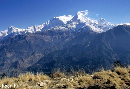L'Annapurna S depuis Poon hill