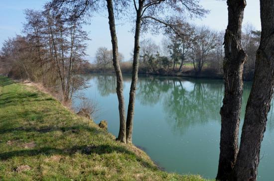 La Marne à Gland