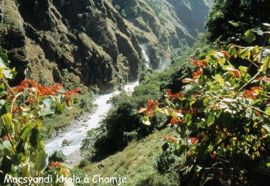 La Marsyangdi nadi à Chamje