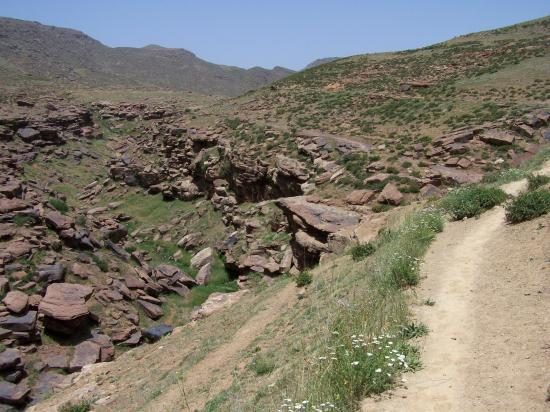 Paysage du plateau du Yagour