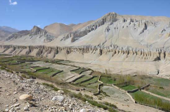 Le long de la Tsarang khola