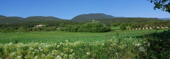 La plaine de Cucuron (au loin le Mourre-Nègre)