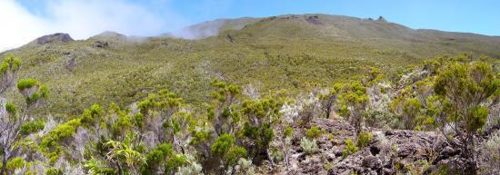 La montée sur le volcan depuis Basse Vallée