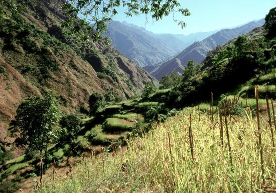 Vallée de la Monjor khola