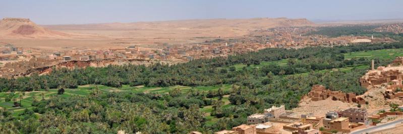 L'oasis de Tinerhir à la sortie des gorges de Todghra