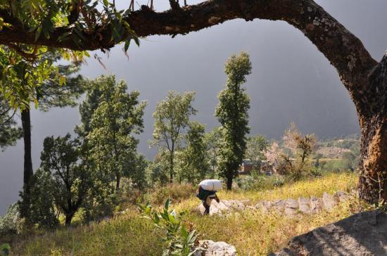 Dans la montée de Jagat à Tasinam