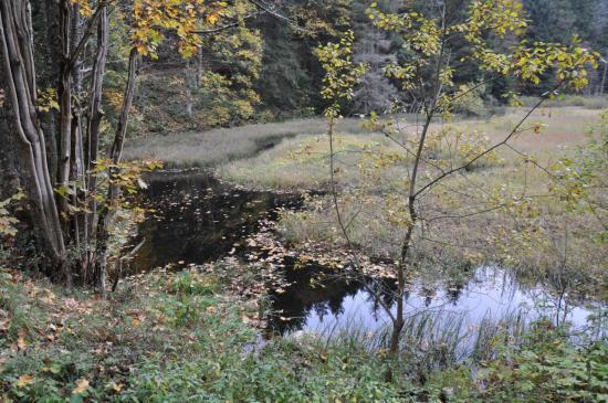 Le lac du Devin
