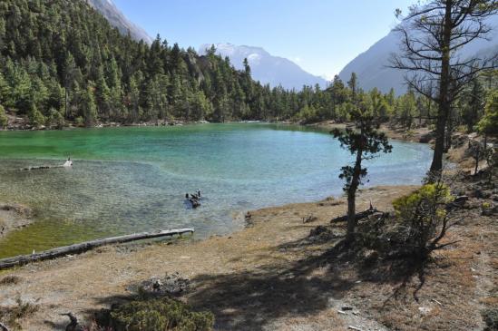 Le lac de Pisang