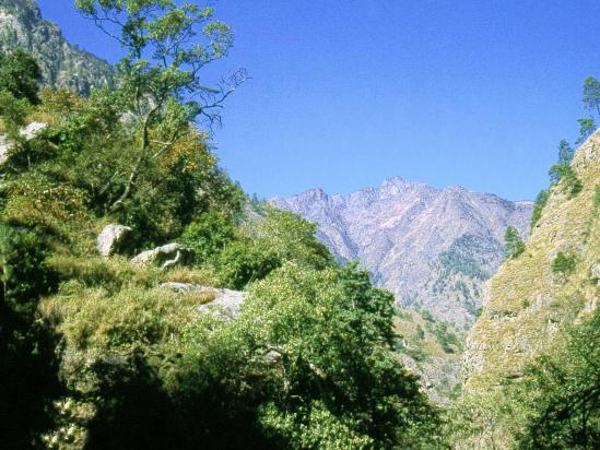 Moyenne vallée de la Budhi gandaki