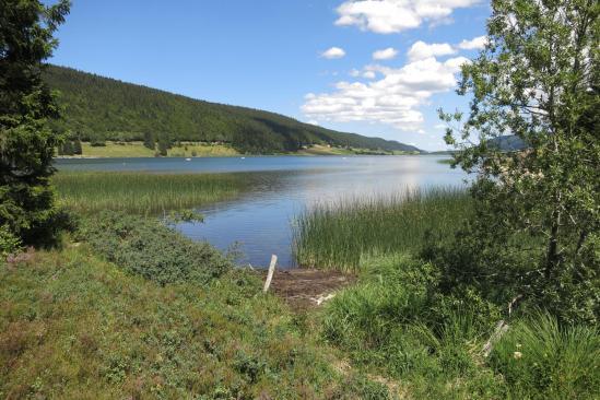 Le lac des Rousses côté écologie...