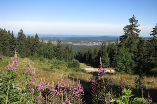Le panorama depuis le col de la Faucille
