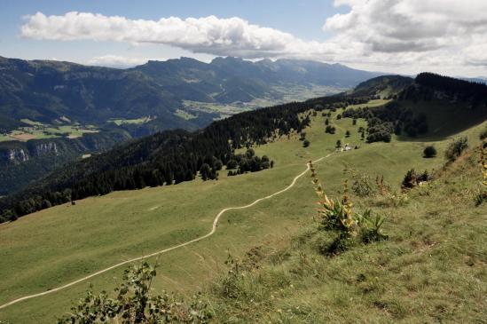 Panorama sur le plateau de Lans-en-Vercors depuis le belvédère de la Molière