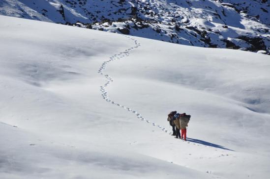 Une petite neige tardive ? Ici au passage du col entre Lachhewar et la vallée de la Basa khola