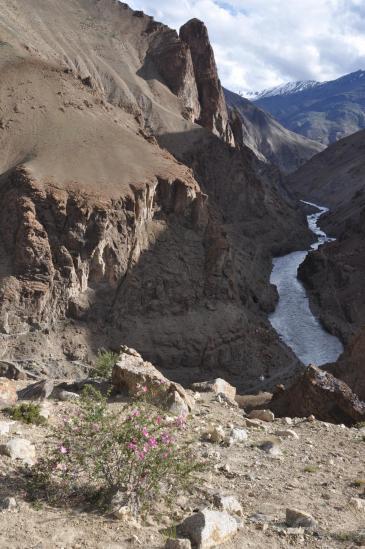 Les gorges de la Tsarap Chu vues depuis les hauts de Phuktal