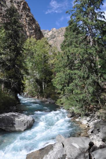 Le long de la Phoksundo khola