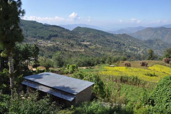 Depuis Galpa bazar, vue sur la verdoyante vallée de la Thilap khola