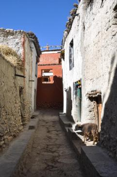 Dans les ruelles de Lo Monthang