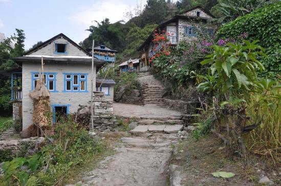 Jubing dans la vallée de la Dudh kosi