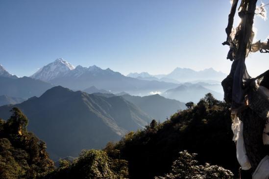 Matin serein à Upallo Jalja La (Dhaulagri I, Annapurna et Machhapuchchhre)