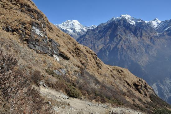 Descente dans la vallée de la Hinku khola face au Mera peak
