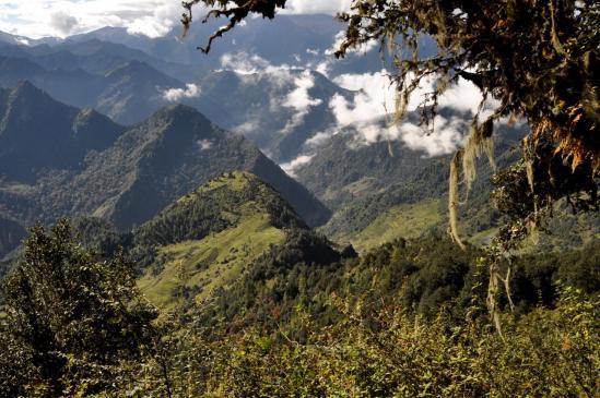 Les paysages quasi-réunionnais au-dessus de Dhule (Rukump