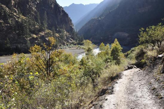 Le long de la Bharbung khola